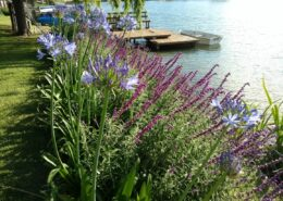 Jardin en Talar del Lago 1