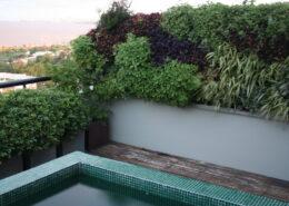 Terraza con Paredes Verdes
